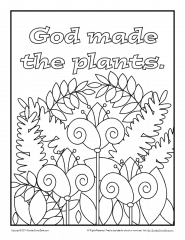 Sunday School - Creation Bible Coloring Pages | 240x185