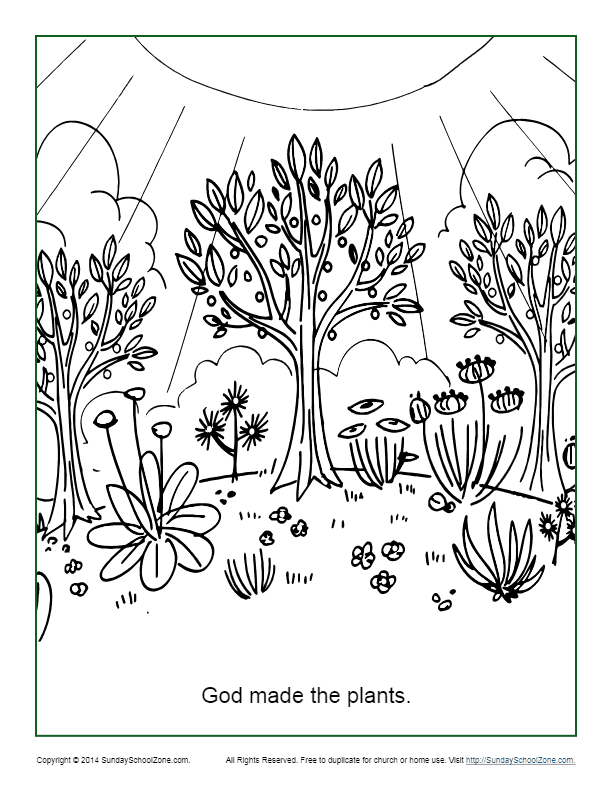 God Made The Plants Coloring Page